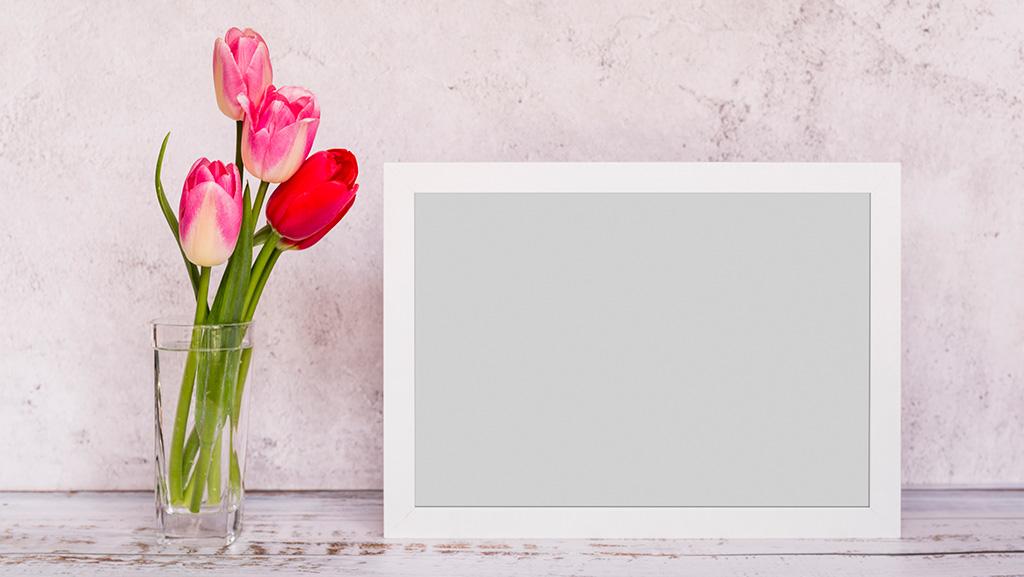 همه چیز درباره عکسهای سایت شما!